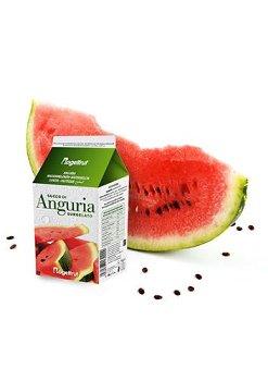 TK-Wassermelone Püree